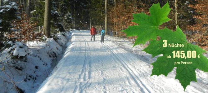 Ausflug in den Schnee