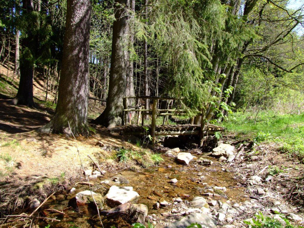 Kleine Brücke über einen Bach im Wald